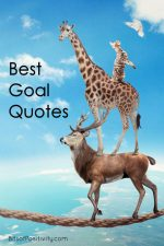 Best Goal Quotes
