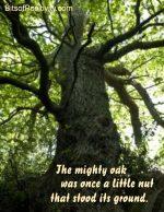 """""""Mighty Oak"""" Word-Art Freebie"""