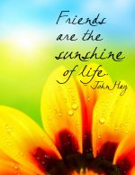 """Friends Are the Sunshine of Life"" Word-Art Freebie"