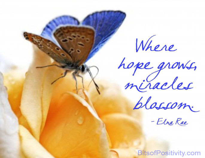 """Where hope grows, miracles blossom."" Elna Rae"