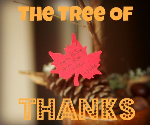 The Tree of Thanks (Photo from In Lieu of Preschool)