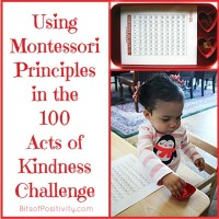 Using Montessori Principles in the 100 Acts of Kindness Challenge