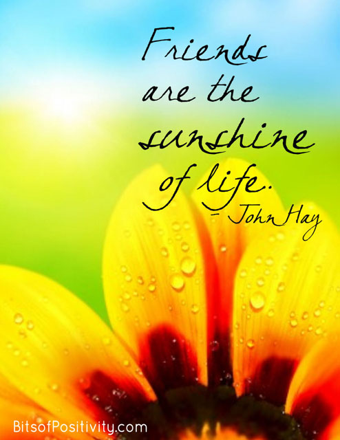 """Friends are the sunshine of life."" John Hay"