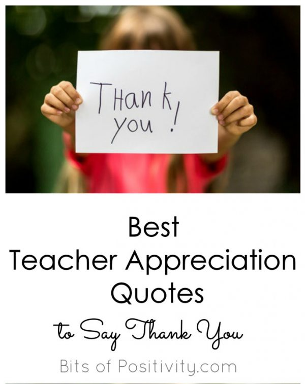 Best Teacher Appreciation Quotes to Say Thank You - Bits of Positivity
