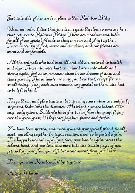 """Rainbow Bridge"" Free Printable Poem {Pet Loss}"