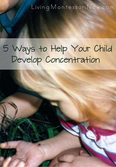 help-your-child-develop-concentration