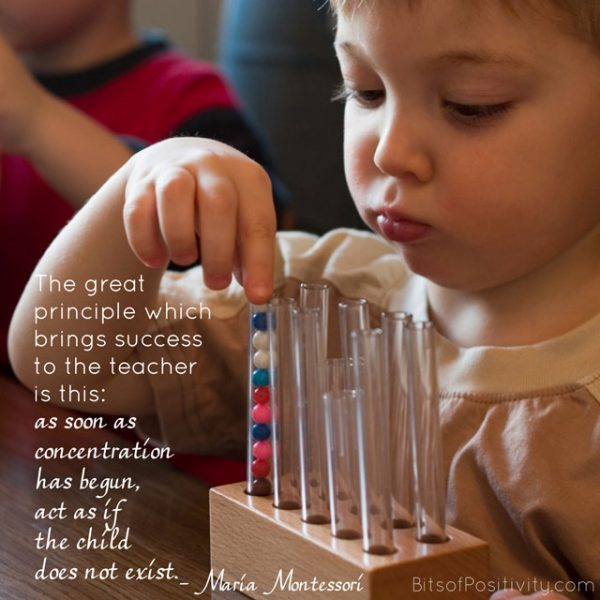 """""""The Great Principle Which Brings Success to the Teacher"""" Montessori Word Art Freebie"""