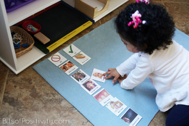 Working with Montessori-Inspired Hygiene Cards at Age 2