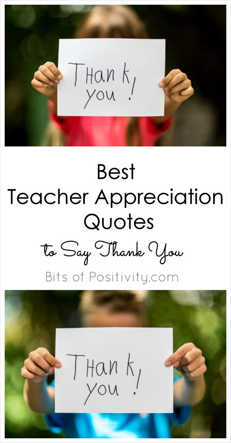 Thank You Teacher Quotes Awesome Best Teacher Appreciation Quotes To Say Thank You  Bits Of Positivity