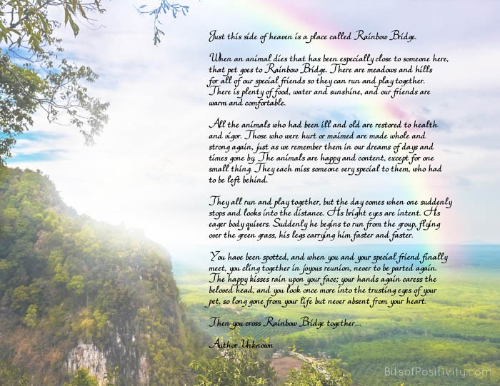 Rainbow Bridge Free Printable Poem {Pet Loss}