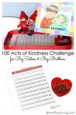 100 Acts of Kindness Challenge for Big Sisters and Big Brothers