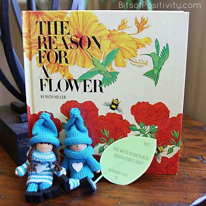 "The Kindness Elves with The Reason for a Flower Book and ""Shall We Fill a Planter with Bedding Plants Today?"" Message"