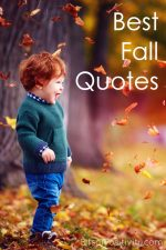 Best Fall Quotes {Favorite Seasonal Inspiration}
