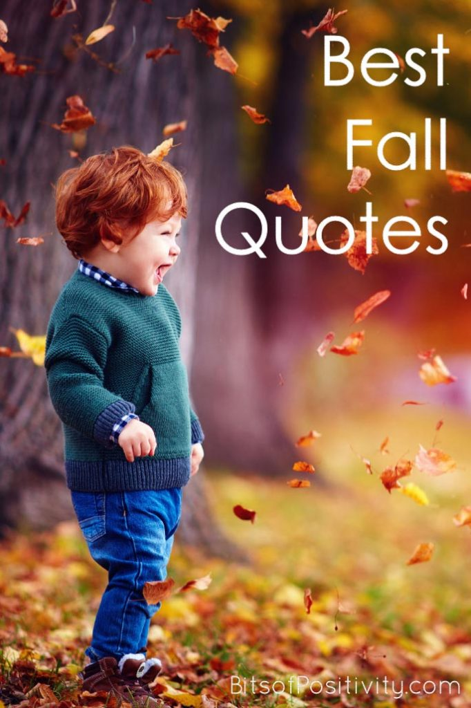 Best Fall Quotes Favorite Seasonal Inspiration Bits Of Positivity